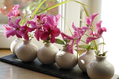 ©Javoy Plantes, bouquet de clématites, fleurs coupées en vase