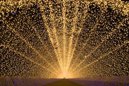 road of lights in nagashima land