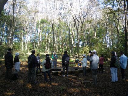 11/23「里山を訪ねるⅡ」では「里山の四季」「こぴすくらぶ」「木の子の森」を巡りました。