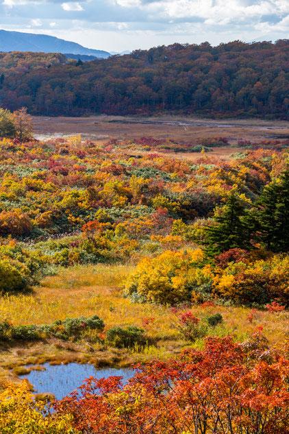 栗駒山荘から見える紅葉
