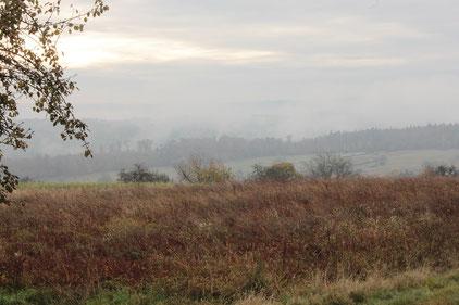 Wanderbeginn am 13.11.16 um 10:00 Uhr bei 3 °C - Blick aus Nähe Friedhof Völkersbach in Richtung Moosalbtal (G. Franke)