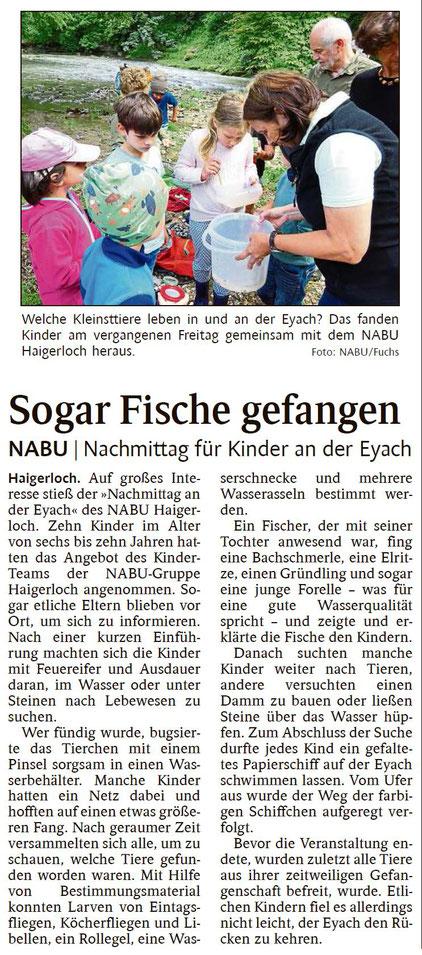 Schwarzwälder Bote, 18.07.2019