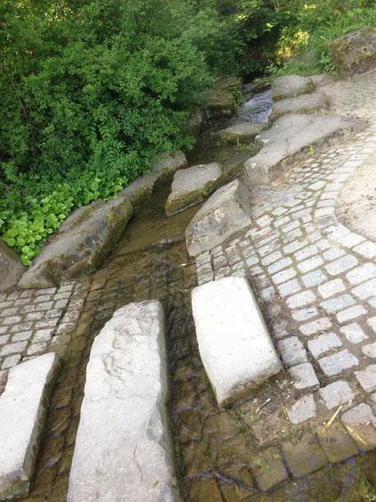Ablauf des Elsche-Wasser vom Ahnepark in die Ahne