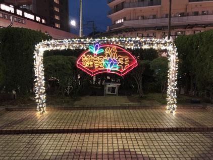 宝塚南口の新年イルミ