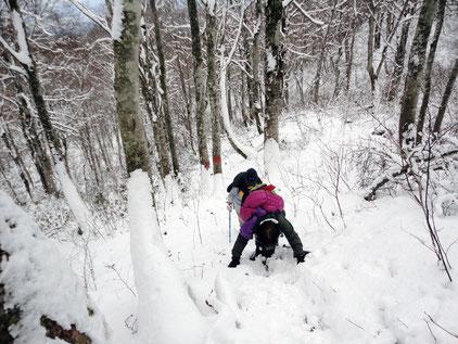 2015.12.20  積雪10cm程度の少雪ながら急斜面に汗!!