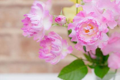 紅茶のティーカップとパンジーの花。
