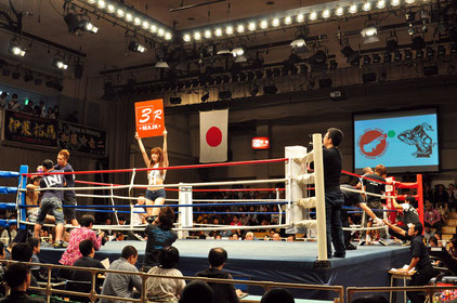 Martial Arts Japan Kickboxing Federation Break-30