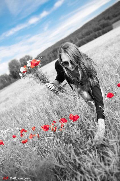 Blau Himmel rote Blumen