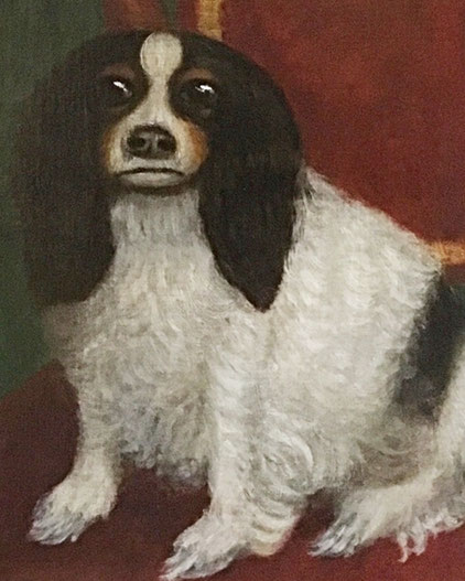 Kings Charles Spaniel seated on a chair