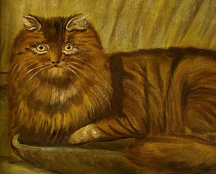 19th century folk art  naive school.  Portrait of a cat