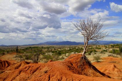 Kolumbien Huila Reisen Tatacoa Wüste