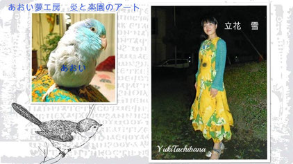 美術家 立花雪 YukiTachibana 炎と楽園のアート