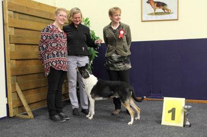 En de winnaar door ons gekozen tot mooiste Hond van DTC