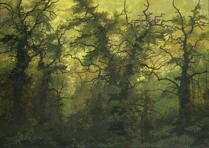 """Martin Guido Becker""""Waldstück"""", 2007, Öl/Lwd, 50/70 cm,"""