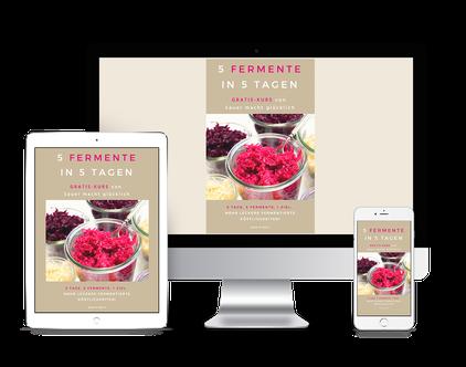 Kurs 5 Fermente in 5 Tagen
