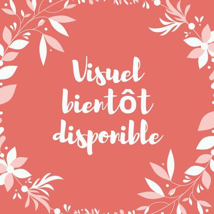 Le Salon du Mariage & jours de fête à Lyon 13 & 14 Novembre 2021
