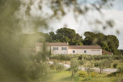 gite Aude Pays cathare au coeur des terroirs