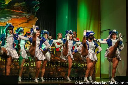 Viele Tänze gab es natürlich auch zu sehen. Hier: die Royalgarde aus Mettenheim.