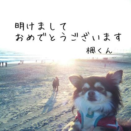 東京都品川区旗の台3-6-25-105メゾンそら105 さいとう整体/明けましておめでとうございます/子連れ/託児/保育士による託児