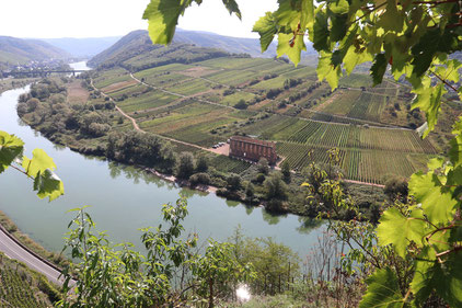 Mosel am Calmont