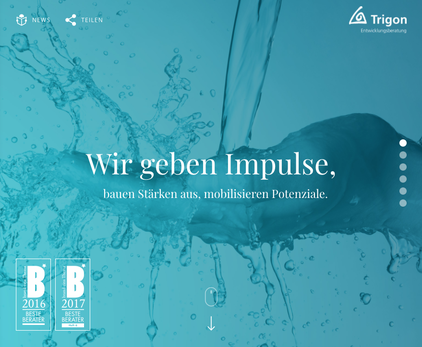 Trigon Beratungsfelder - Wolfgang Grilz