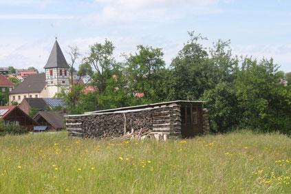 4. naturkundliche Wanderung zwischen Ittersbach und Pfinzweiler - Wanderbeginn oberhalb des Friedhofs in Ittersbach (G. Franke)