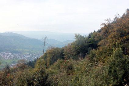 am Käpple - Blick über Loffenau