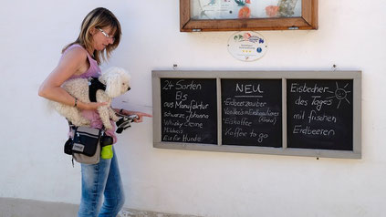 Tierportraits Hund Katze Pferd Cuxhaven Pastellmalerei