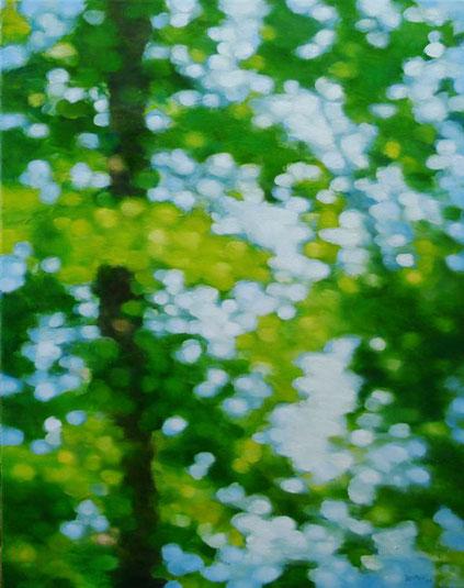 Landscape 60x80