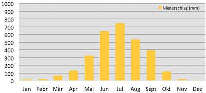 Klimadiagramm durchschnittliche Niederschläge in Punakha in Bhutan