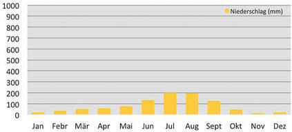 Durchschnittliche Niederschläge in Samdo während der Manaslu-Umrundung in Nepal