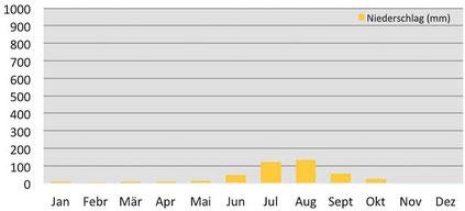 Klimadiagramm durchschnittliche Niederschläge in Gokyo in Nepal