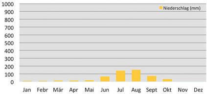 Niederschlag pro Monat in Dingboche beim Mount Everest