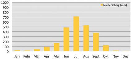Klima und Wetter - Klimadiagramm Niederschlag in Darjeeling in Indien