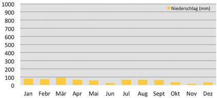 Klimadiagramm - Niederschläge in Kaza in Spiti
