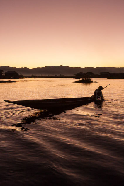 Nuance aquatique - Lac Inle - Birmanie © Olivier Philippot Photo