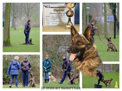 26 Mars le diplome Obedience for Dyson