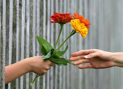 Picoterapia umanistica Rogers - sostegno aiuto realizzazione personale