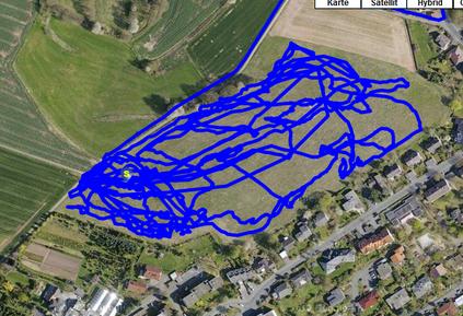GPS Messungen belegen, dass unsere Pferde zwischen 9 und 13km/Tag zurücklegen