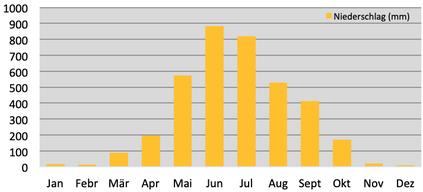 Klimadiagramm durchschnittliche Niederschläge in Panbang in Bhutan