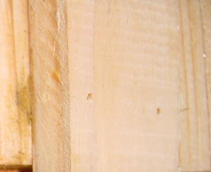 Les fixations des couvre-joints de bardage bois doivent répondre aux conditions de résistance, ce qui n'est pas le cas des pointes lisses à section rectangulaire