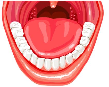 klik - zęby człowieka