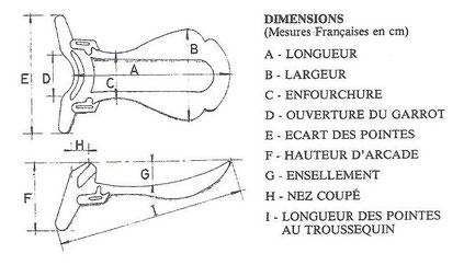 Dimensions des arçons