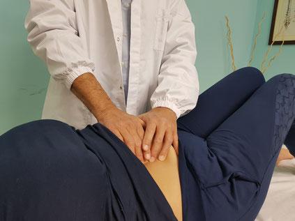 MASSOFISIOTERAPIA - Osteopata e fisioterapista Dr. Antonio Santi - Santa Maria a Monte (PI) | presso la palestra Olympia | Toscana - apparato viscerale