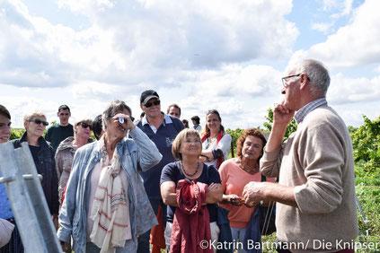 Mit einer Weinwanderung, Weinprobe und mit Weinbergsrundfahrten unterhielt die Familie Grittmann ihre Besucher.