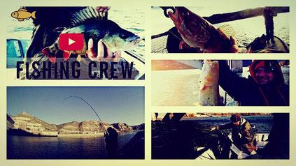 Fishing Crew - Am Ebro unterwegs auf Zander, Barsch und Wels