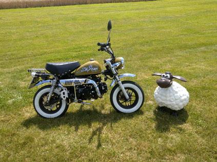 Minibike Custom Skymini Skyteam armeegrün mit Weisswandreifen Honda Gorilla Honda Monkey Honda Dax