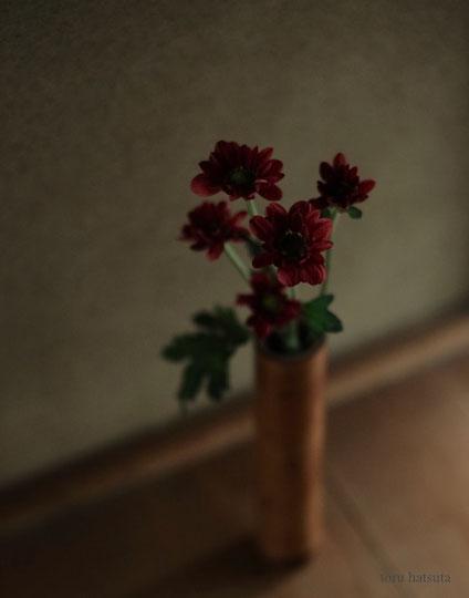 煤竹の一輪挿しに菊を
