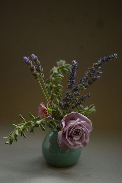 small sunny garden, desert garden, amy myers, photography, monday, in a vase on monday, sterling silver, rose, zinnia, winter flowers, lavender