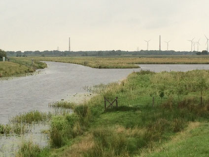 Der Sauteler Kanal in Höhe des Meedeweg in der Nähe der Ortschaft Stikelkamp mit rechtsseitigem kleinen Altarm.